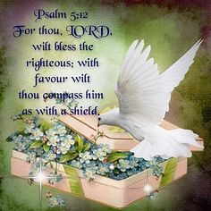 PSALM 5:12 For thou, Lord will bless the righteous; with favor will thou compass him as with a shield