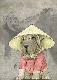 Shar Pei on the Great Wall by therese