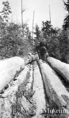 Logging flume on Thurlow Island (unknown year).  Yeatman Fonds - CR Museum
