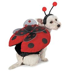 Casual Canine Ladybug Costumes for Dogs