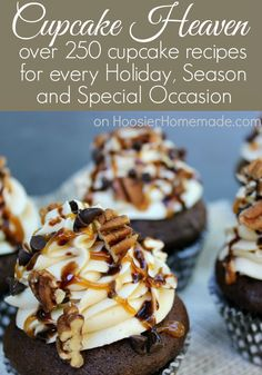 Cupcake Heaven : Over 250 Cupcake Recipes for every Holiday, Season and Special Occasion on https://HoosierHomemade.com