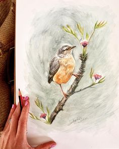 Oh hey lil guy 👋🏿. This sweet little birdy is available (delivery after lockdown). Watercolour on A3 paper unframed. DM for for details xxx