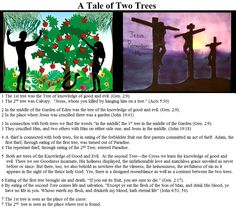1 The 1st tree was the Tree of knowledge of good and evil. (Gen. 2:9). 1 The 2nd tree was Calvary.  Jesus, whom you killed by hanging him on a tree. (Acts 5:30)  2 In the middle of the Garden of Eden was the tree of the knowledge of good and evil. (Gen. 2:9). 2 In the place where Jesus was crucified there was a garden (John 19:41) http://www.lovebiblestudy.com/CBC/CBC_00_Chapter_by_Chapter.htm