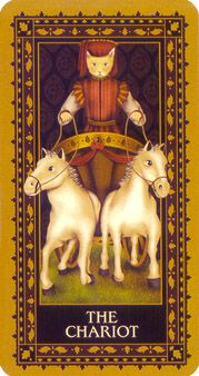 September 18 Tarot Card: The Chariot (Medieval Cat deck) You're the one that is driving your life. With extreme focus and a true purpose, you can take your life in a whole new direction now Major Arcana Cards, Tarot Major Arcana, The Chariot Tarot, Tarot Card Meanings, Oracle Cards, Tarot Decks, Tarot Cards, Renaissance, Astrology