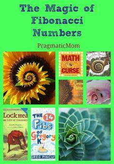 The Math Behind Spirals: FInding Math in Nature with Kids :: PragmaticMom