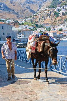 http://agitare-kurzartikel.blogspot.com/2012/07/trapp-management-energieberater.html  Greece