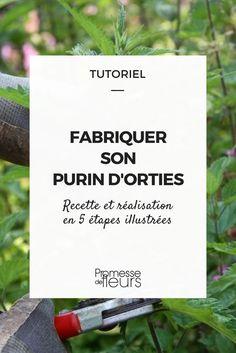 Purin d'ortie : comme faire et les utilisations #ortie #purin #tuto #diy