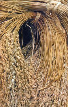 Sheaves of Harvest grains