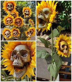Diy halloween decorations 510103095294658567 - Skull Sunflowers (Tutorial)- skull flowers instructions how to. Skull sunflowers for a fall halloween outdoor decoration! Theme Halloween, Halloween 2019, Holidays Halloween, Happy Halloween, Halloween Skull, Halloween Yard Ideas, Outdoor Halloween Parties, Halloween Flowers, Halloween Party Favors