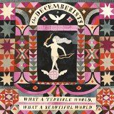 nice ALTERNATIVE ROCK – Album – $9.49 –  What A Terrible World, What A Beautiful World