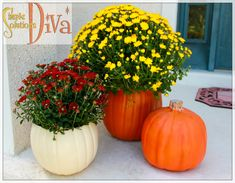Simple Fall Decor: Create Your Own Pumpkin Planter Pumpkin Planter, Fall Planters, Easy Garden, Garden Ideas, Take You Home, Easy Halloween, Easy Projects, Easy Diy, Simple Diy