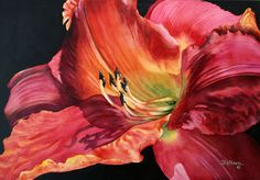 """""""Red Daylily"""" - watercolor by Jeanne DeHaan"""
