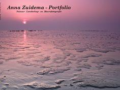 Anna Zuidema - Portfolio • Anna Zuidema • CEWE COMMUNITY: Anna Zuidema - Portfolio