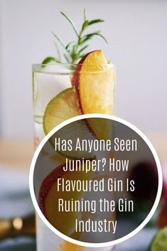 Cocktail And Mocktail, Fun Cocktails, Gooseberry Gin, My Favorite Food, Favorite Recipes, Flavoured Gin, Gin Tasting, Best Cocktail Recipes, Mince Pies