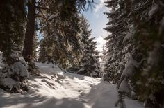 It's, oh, so quiet by Marcel Ilie on Winter Mountain, Mountain Landscape, Marcel, Outdoor, Outdoors, Outdoor Games, Outdoor Living