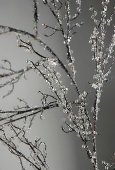 How to make Easy Iced Branches! Save tons of money plus these look better than store bought! - Great for holiday bouquets. Mantel decor or to put in- Easy iced branches. Noel Christmas, Winter Christmas, All Things Christmas, Homemade Christmas, Christmas Branches, Winter Holidays, Christmas Ideas, Cheap Christmas, Christmas Wedding