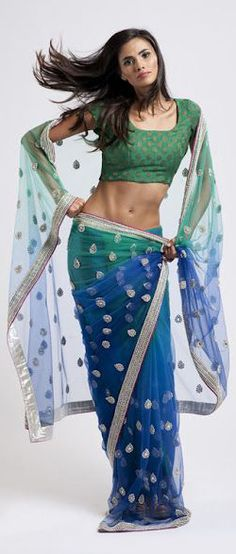 Blue & Green Net Saree from House of Raaj Collection 2012