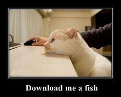 Download Me A Fish