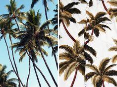 Will Adler. Photo vs. pattern.