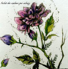 Po Drugiej Stronie snu de Karolina kubikowska coloriage : l'éclat des couleurs par solveig