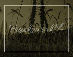 "Check out new work on my @Behance portfolio: ""Frackowiak Bakery"" http://on.be.net/1EeOWSB"