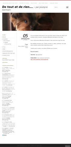 Mon bLog 'Jocegermain.wordpress.com' Image créée avec Pinstamatic (http://pinstamatic.com)