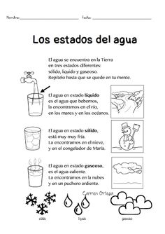 los estados del agua para escolares Bilingual Classroom, Bilingual Education, Classroom Language, Spanish Classroom, Teaching Spanish, Science Activities, Science Projects, Science Anchor Charts, School Items