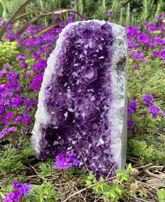 #amethyst  #amethystcrystal  #healingcrystals #bohodecor #bohodecorideas Large Crystals, Natural Crystals, Crystals And Gemstones, Stones And Crystals, Amethyst Geode, Amethyst Cluster, Rocks And Gems, Rocks And Minerals, Crystal Garden