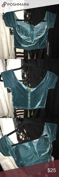 Princess Jasmine crop top Condition : brand new with tags  Size : 0 but would fit 0-2 / small / xsmall / it is wire front low cut and zip up in the back  Purchased from Toni.com for $49.00  Can be paired with a skirt or leggings or jeans for a fun outfit also can be used for a jasmine costume for Halloween Tobi Tops Crop Tops
