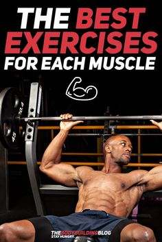 Find out What are the Best Exercises for Each Muscle Group to help you grow bigger and stronger! #fitness #gym #exercise #muscle #bodybuilding #workout