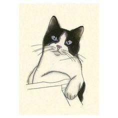 Cat drawing - Earl  -  4 X 6 print of original drawing
