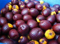 Buriti/Moriche palm.