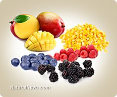 The missing link in your storable food strategy: Where are all the fruits that provide essential nutrients to keep you alive?  You can buy these at the Natural Food Store | Natural News
