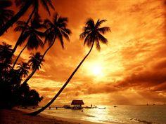 costa rica surf vacation