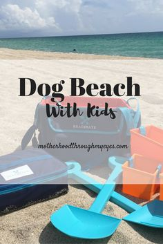 A beach day isn't complete if we don't have our boys with us — pup included. We…