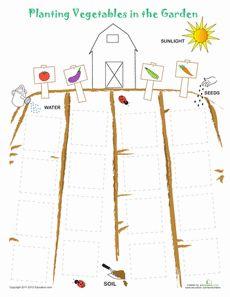 Plant a Vegetable Garden Worksheet