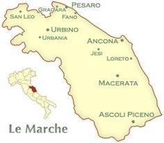 Le Marche Wines and the 2012 Bisci Verdicchio Di Matelica White Wine Grapes, Across The Border, Regions Of Italy, Best Kept Secret, Italian Wine, Cumbria, Amalfi, Old Town, Tuscany