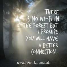 INSPIRATION - EILEEN WEST LIFE COACH | There is no wi-fi in the forest, but I promise you will have better connection. | Eileen West Life Coach, Life Coach, inspiration, inspirational quotes, motivation, motivational quotes, quotes, daily quotes, self improvement, personal growth, forest, connection