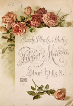 Illustrated front cover of 'Pilcher & Manda, Seeds, Plants & Bulbs' catalogue 1896.Pilcher & Manda, Short Hills, N.J.U.S. Department of Agriculture, National Agricultural Libraryarchive.org