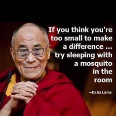 Dalai Lama Quote Idea dalai lama quote if you think thats easy try sleeping with Dalai Lama Quote. Here is Dalai Lama Quote Idea for you. Dalai Lama Quote 100 dalai lama quotes that will change your life. Wise Quotes, Quotable Quotes, Great Quotes, Words Quotes, Quotes To Live By, Funny Quotes, Inspirational Quotes, Change Quotes, Strong Quotes