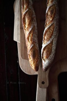 Find the bread-baking tools and resources you need to make great bread. Bread Bun, Pan Bread, Bread Baking, My Daily Bread, Baguette Bread, French Bakery, Bread And Pastries, Fresh Bread, Artisan Bread