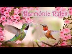 HARMÓNIA Relax * Stressz oldása * Inspiráció tanuláshoz, al. Meditation, Songs, Music, Youtube, Animals, Musica, Musik, Animales, Animaux