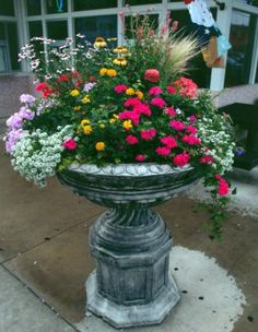 Beautiful Urn…filled with different flowers…maybe a space for a solar light … - All For Herbs And Plants Bird Bath Planter, Bird Bath Garden, Garden Urns, Garden Trellis, Container Flowers, Container Plants, Container Gardening, Succulent Containers, Vegetable Gardening