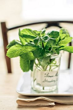 No flowers ? It's easy to improvise. A supermarket french jam jar & some 'stolen' mint.