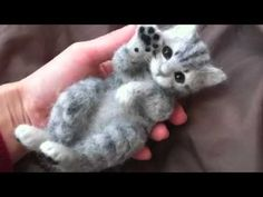 D.H. MINI ANIMALI - GATTO TUTORIAL
