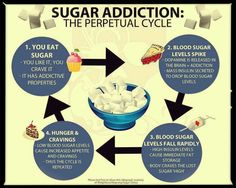 Sugar addiction life cycle