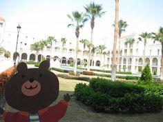 Barney Bear in Cabo San Lucas, Mexico!