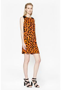 Leo Leopard Flared D