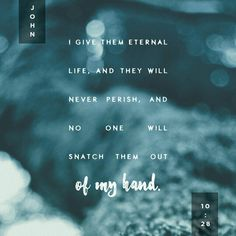 John I give them eternal life, and they shall never perish; no one will snatch them out of my hand. My Father, who has given them to me, is greater than all; no one can snatch them out of my Father's hand. John 10 27, Who Is Jesus, Jesus Loves, Get Closer To God, New American Standard Bible, Gods Promises, Verse Of The Day, The Life, My Father