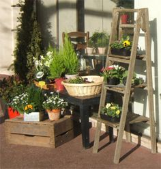 stojak na kwiaty doniczkowe - Szukaj w Google